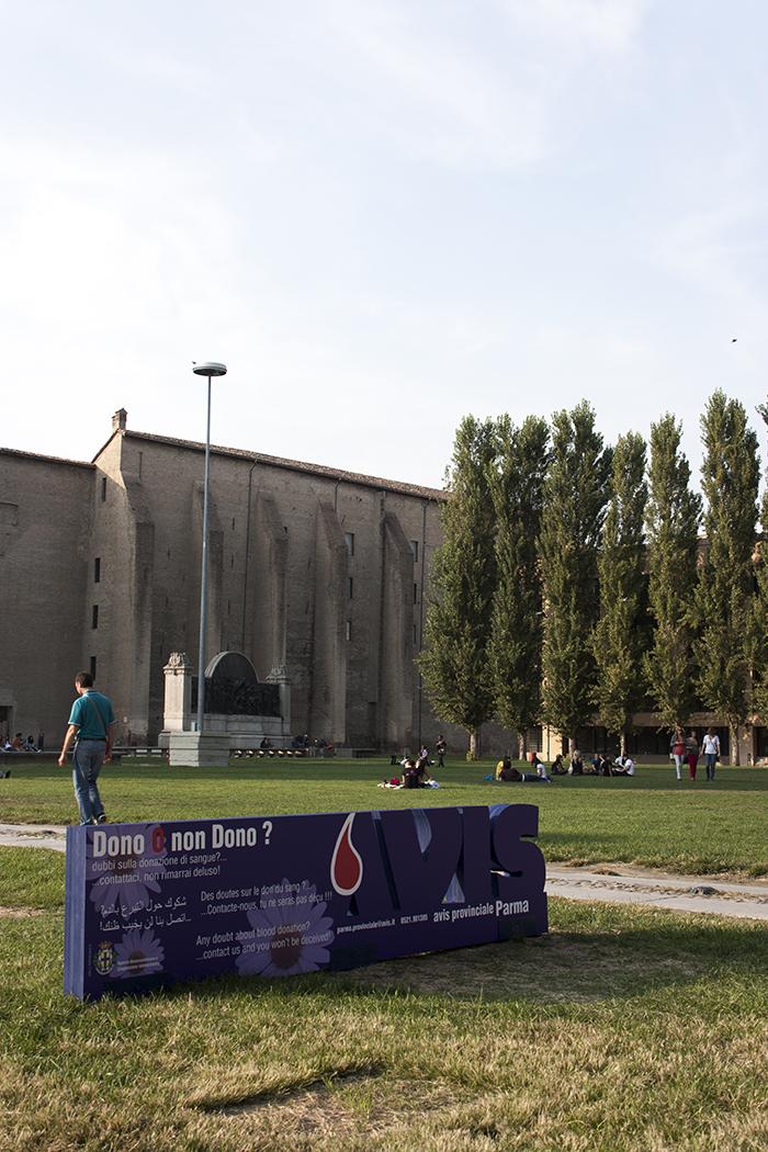 Avis Parma