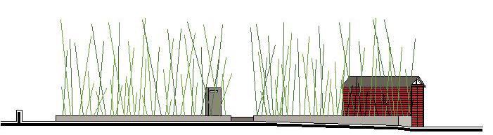 Roccabianca, giardino di bambù